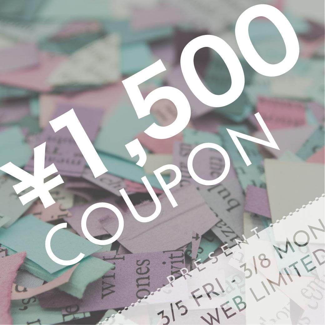 WEB STORE coupon